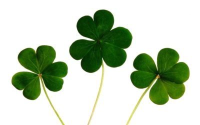 Are you relying on luck or malarkey?